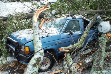 car smashed by trees after the ice storm