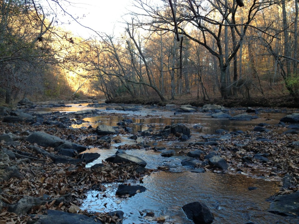 The Eno River at dusk in autumn